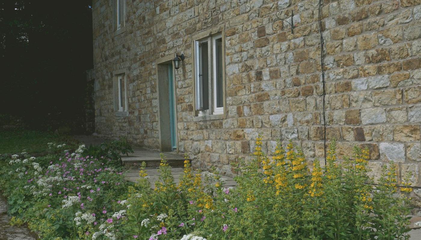 Green-door-outdoor-imahe