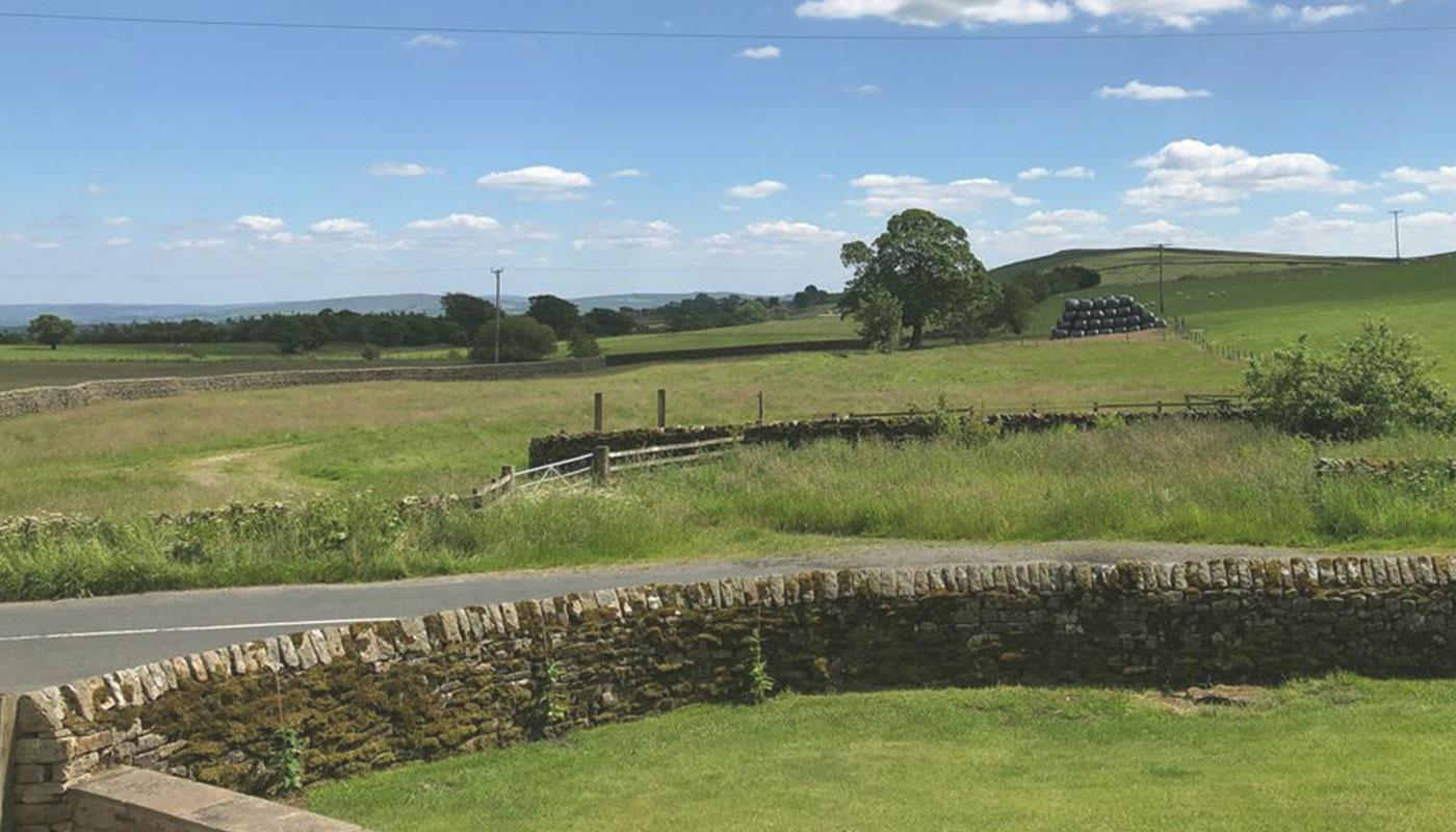 Outdoor-shot-fields