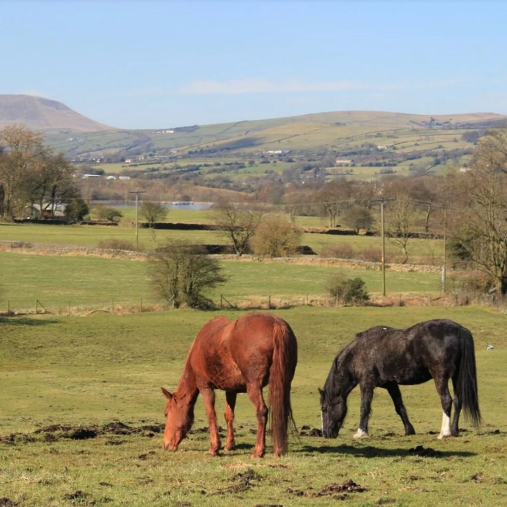 2021 pendle hill image